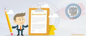 декларация ип