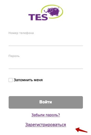 Кнопка регистрации ТЭС