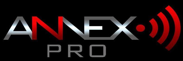 Логотип ANNEX.PRO