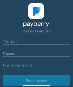 PayBerry регистрация