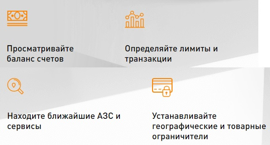 ОПТИ 24 сервисы