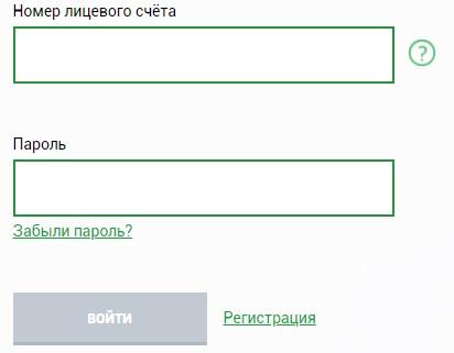 tns-e.ru вход