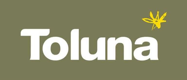 Толуна