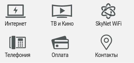 SkyNet услуги