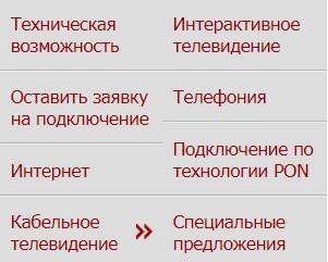 Русская компания услуги